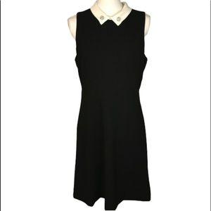 Ivanka Trump black sheath dress with white collar